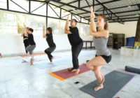 Hatha Yoga Teacher's Training Course In Rishikesh